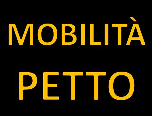 Mobilità e stretching petto