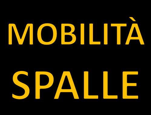 Mobilità e stretching spalle
