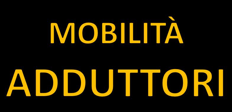 Mobilità e stretching adduttori