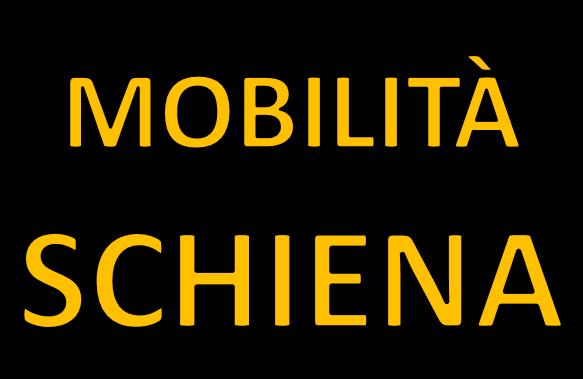 Mobilità e stretching schiena