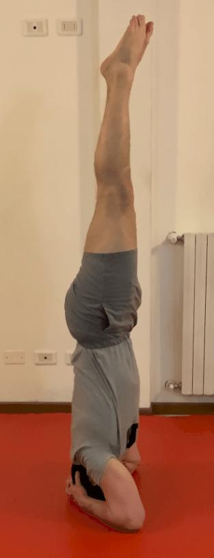 Verticale sui gomiti: tutorial ed esecuzione